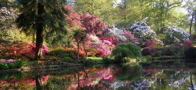 Nuostabūs Eksburio sodai Anglijoje