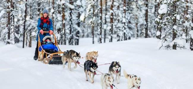 Kelionė į šiaurietišką Suomiją: 5 idėjos šeimos Kalėdų atostogoms