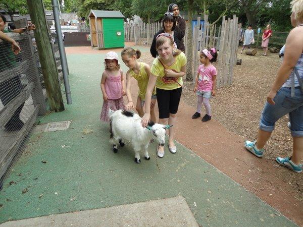 Londono zoologijos sode