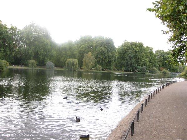Žaliasis parkas