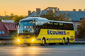 ecolines-300x199
