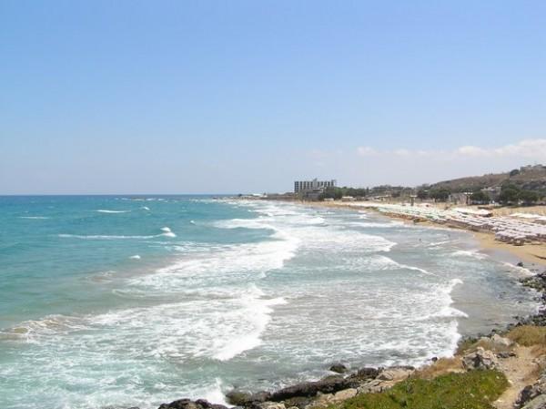 Kreta papludimys