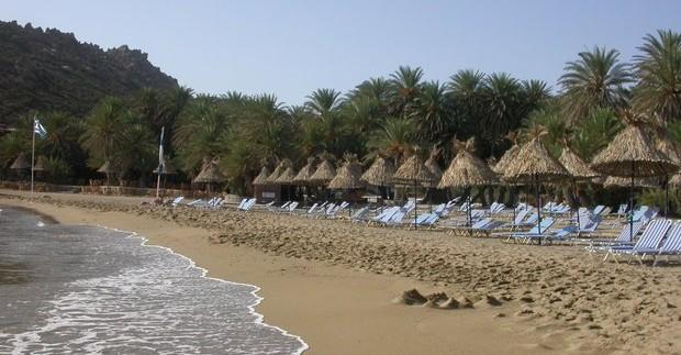 Kretos sala. Vai palmių miškas
