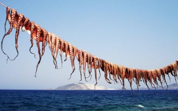 Dienos ekskursija iš Koso – Nisyros sala