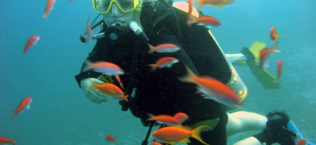 Dešimt geriausių nardymo vietų Raudonojoje jūroje