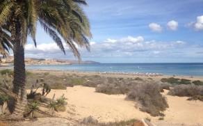 Atostogos Fuerteventūroje su vaikais: viskas ko reikia vienoje saloje