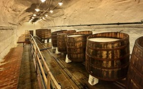 Čekiškas alus: nuo Pilzeno ir Budweiser iki alaus SPA