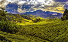 Malaizija: apibraukta Rytų kultūrą įsimylėjusių lietuvių keliautojų žemėlapiuose